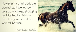 "Radhanath Swami: ""Never Give Up"""
