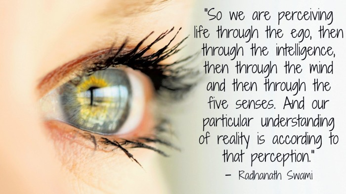 Radhanath-swami-on-perception