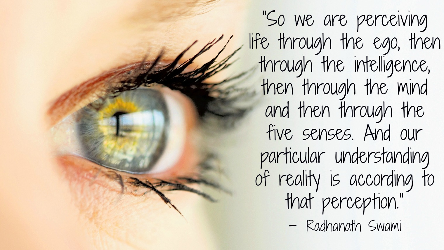 Radhanath swami on perception